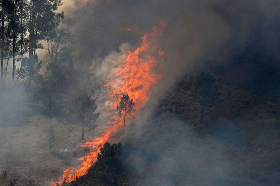 """Si les feux de forêtsétaient """"maîtrisés à 90%"""" lundi matin, selon la Protection civile, les flammes ravagent toujours le centre du Portugal. Photo prise àGondomil, près de Valenca."""