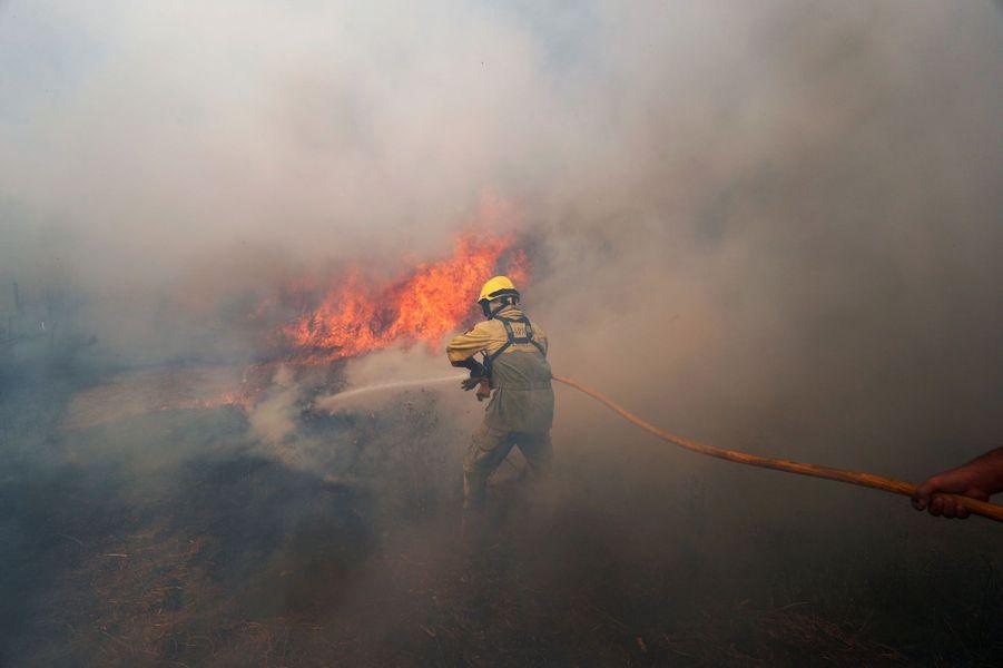 """Si les feux de forêtsétaient """"maîtrisés à 90%"""" lundi matin, selon la Protection civile, les flammes ravagent toujours le centre du Portugal.Photo prise àVila de Rei."""