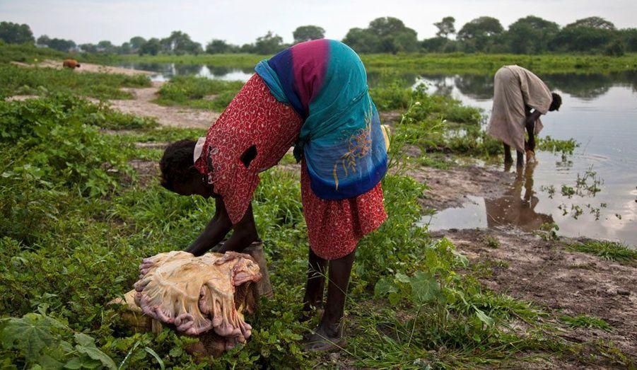 Des femmes nettoient la peau d'animaux morts.