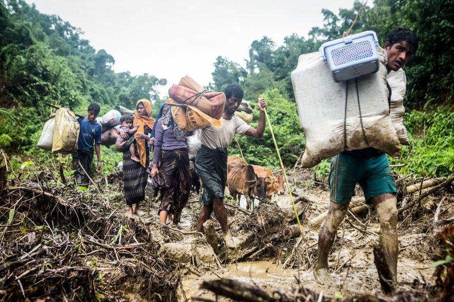 Plus de 120 000 Rohingyas ont dernièrement fui la Birmanie pour le Bangladesh.