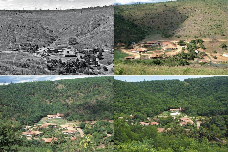 De 1999 à 2019, la « croûte pelée » de Bulcão se remet peu à peu à verdir. Autour de l'ancienne ferme, des bâtiments ont fleuri, dont un centre de formation écologique avec 140lits.