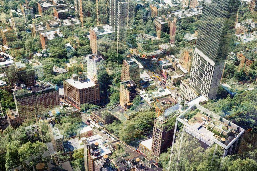 Le photographe de Getty Images, Tim Robberts, réinvente New York dans cette image conceptuelle en la couvrant d'arbres.