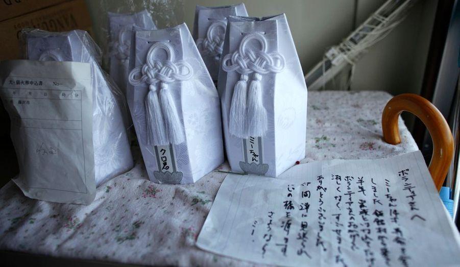 Les cendres des chats morts dans la zone contaminée sont placées dans des urnes au sein de l'organisation UKC Japan.