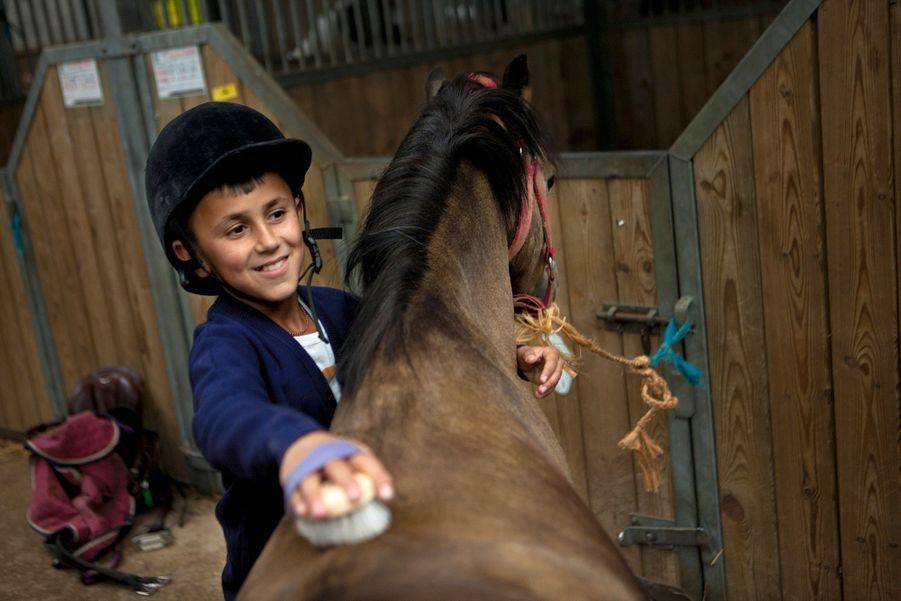 Talan, 11 ans, est apaisé par cette séance de brossage. Les chevaux d'équithérapie sont choisis pour leur caractère calme.
