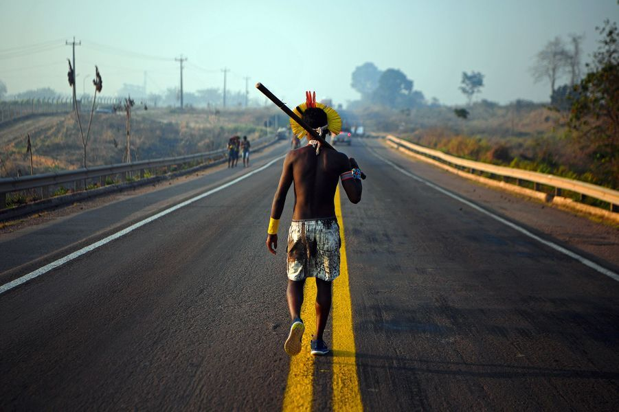 Les Kayapo ont bloquéla BR-163, principale artère d'acheminement des récoltes du fertile centre-ouest du Brésil vers les ports fluviaux de l'Amazonie, exigeantdavantage d'aide des autorités brésiliennes contre le coronavirus et l'arrêt des feux dans l'Amazonie.