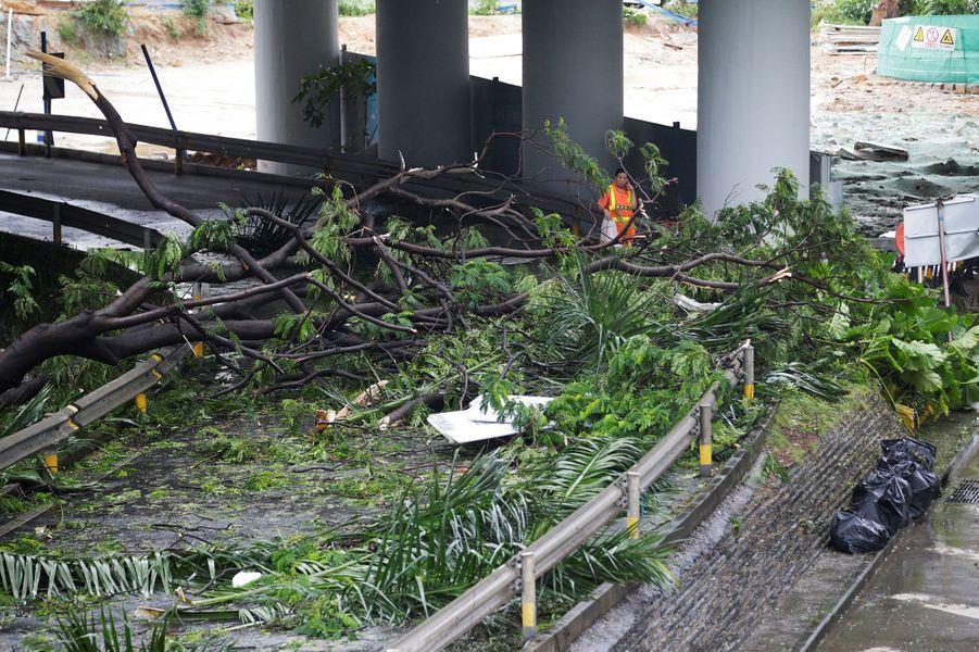 Les dégâts dutyphon Mangkhut àShenzhen