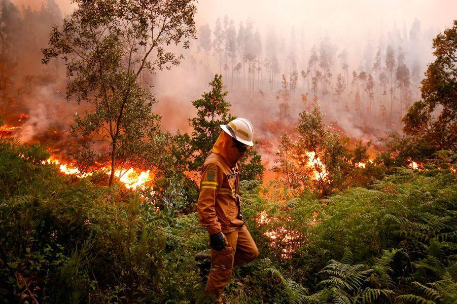 Depuis samedi, le centre du Portugal est ravagé par les flammes, qui ont tué au moins 62 personnes.
