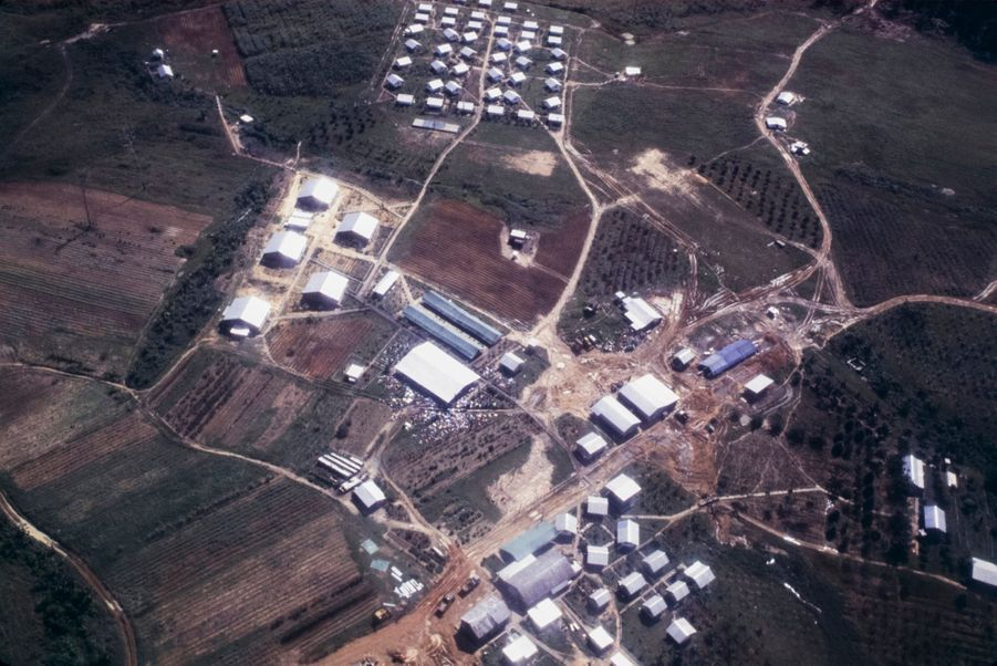 Jonestown, au lendemain du suicide collectif.