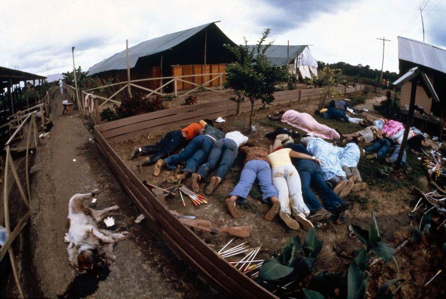 Jonestown, au lendemain du suicide collectif. Même les chiens ont été tués.