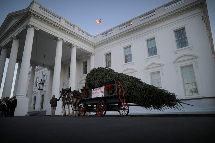 Le sapin de Noël est arrivé à la Maison Blanche, le 20 novembre 2017.