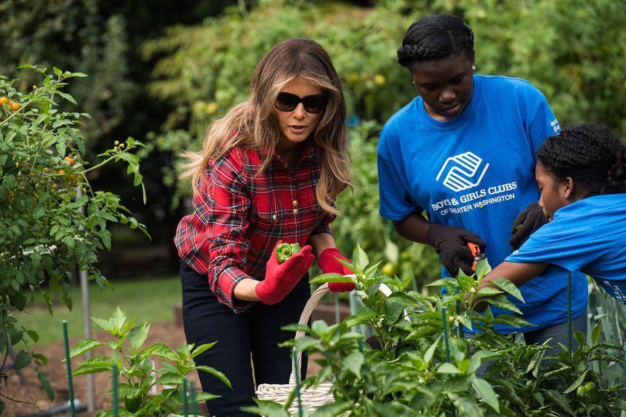 Melania Trump à la Maison Blanche, le 22 septembre 2017.A voir : Melania Trump, la main verte de la Maison Blanche