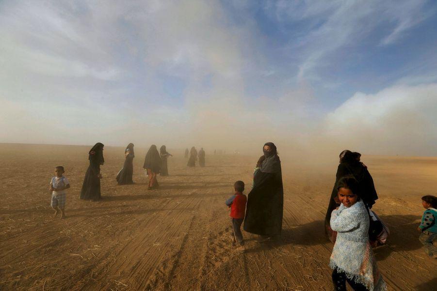Elles marchent avec leurs enfants vers un village, situé au sud de Mossoul, qu'elles ont fui pour échapper à Daech. Les hommes sont au front.
