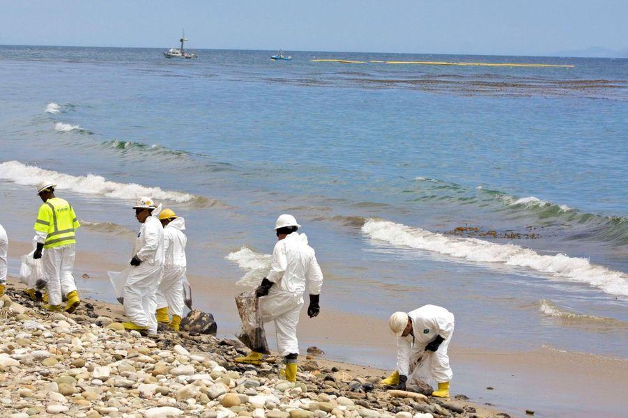 Des sacs en plastiques remplis de sable noirci s'amoncellent. L'odeur de mazout entête jusqu'à plusieurs kilomètres à la ronde. Des animaux meurtris jonchent le sol. Depuis vendredi, des dizaines d'hommes et femmes en combinaison blanche, bottes de caoutchouc, gants et casques s'affairent, pelles en main, pour enlever les plaques de pétroles sur la plage californienne de Refugio,trois jours après le début de la marée noire.Au loin sur l'eau flottent de longues lanières de bouées vouées à contenir l'expansion de la nappe d'hydrocarbures, qui s'étend sur 10 kilomètres de côte au large de Santa Barbara (ouest des Etats-Unis). Le sable est redevenu quasi propre, mais les rochers restent souillés par le mazout qui s'est échappé d'un oléoduc de la société Plains All American Pipeline situé sur une colline surplombant Refugio State Beach et la plage attenante d'El Capitan. Toutes deux sont fermées jusqu'à nouvel ordre, alors qu'elles auraient dû être bondées de touristes pour ce week-end prolongé du Memorial day aux Etats-Unis.«La plage a bien meilleure allure qu'il y a quelques jours mais il reste les rochers. Ça va être long. Il faudra des jours voire des semaines pour revenir à la normale», explique à l'AFP David Mosley, l'un des portes-paroles des gardes-côtes américains. Quelque 300 agents de nettoyage ont été mobilisés et de nouvelles équipes arrivent encore. Les bénévoles sont légion mais avant de pouvoir intervenir ils doivent recevoir un équipement et une brève formation.30 000 litres déversésLes opérations de nettoyage visent également à pomper les nappes pétrolières ou huileuses qui se sont répandues dans la mer: environ 30.000 litres, sur les quelques 400.000 litres de pétrole qui pourraient avoir été déversés, l'ont été. Les autorités nettoient aussi la colline surplombant la plage de Refugio, où se trouvait l'oléoduc qui a fui, pour que le pétrole qui a imprégné le sol ne se déverse pas sur l'autoroute ou encore vers la mer.Plains All American Pipeline doit d