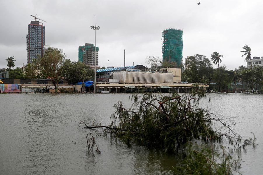 Un arbre flotte dans l'eau après des inondations à Mumbai en Inde le 6 août 2020