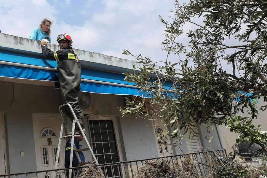 Un pompier aide une femme et son chien sur l'île d'Eubée en Grèce le 9 août 2020