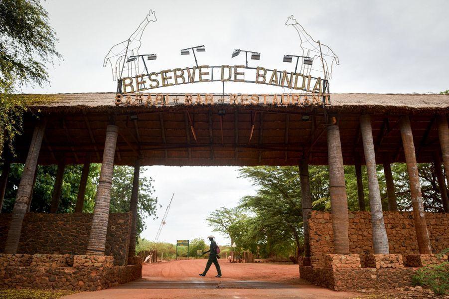 Où et quand : réserve de Bandia, route de M'Bour, à 65 kilomètres de Dakar. Ouverte tous les jours de 8 heures à 18 heures.
