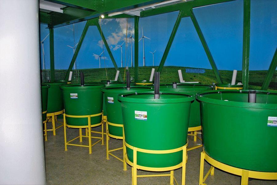Bacs d'aquaculture