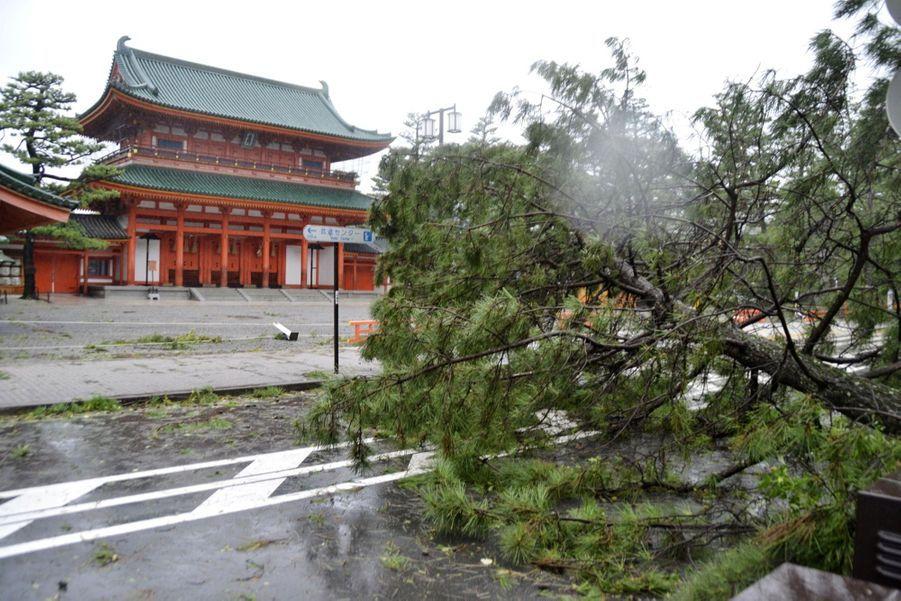 Les impressionnantes images du typhon Jebi à Kyoto, au Japon
