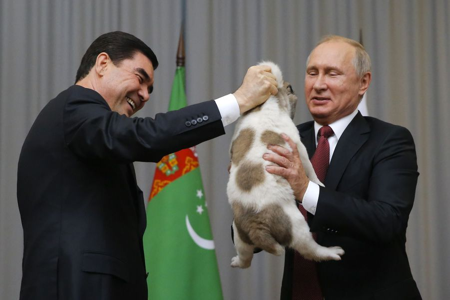 Le président turkmèneGurbanguly Berdimuhamedow a offert un chiot à Vladimir Poutine, le 11 octobre 2017.