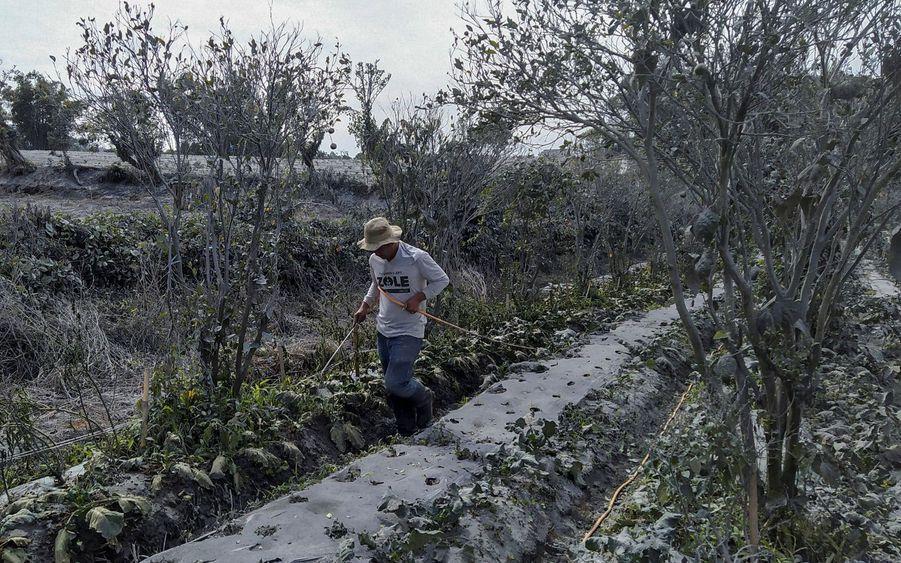 Un agriculteur nettoie son exploitation à Karo.