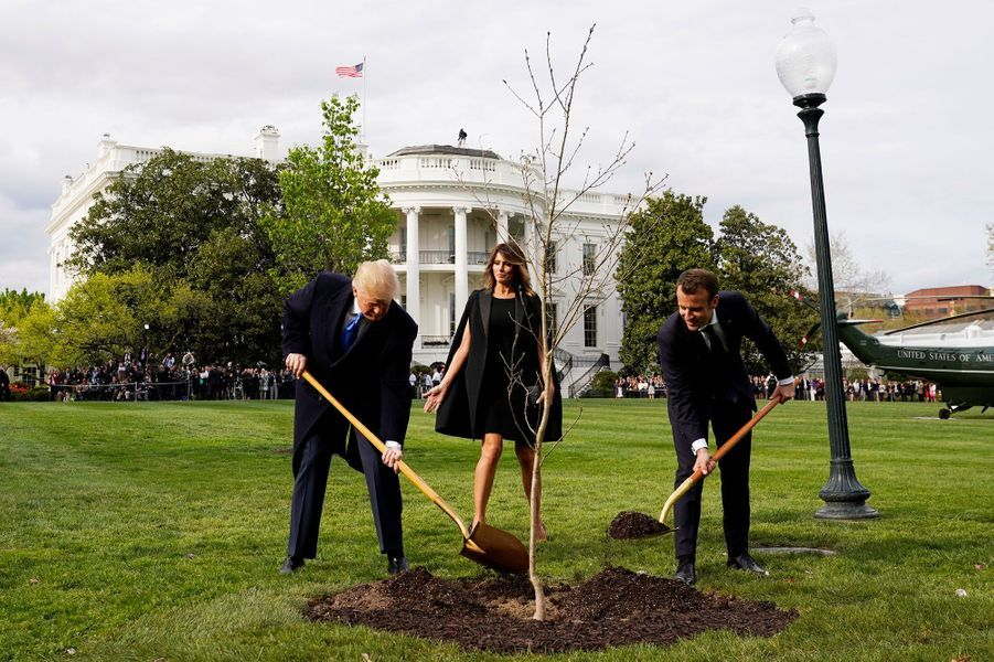 Donald Trump et Emmanuel Macron plantent un chêne dans le jardin de la Maison-blanche. L'arbre vient d'une forêt de l'Aisne où sont tombés des milliers de Marines américains durant la Première guerre mondiale.