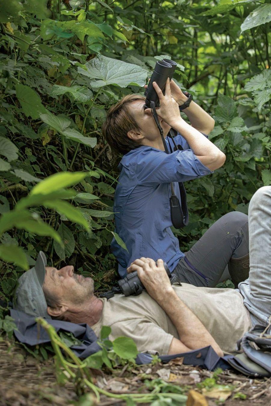 En pleine observation avec Sabrina. Les primates sont perchés dans les arbres, à plus de 30 mètres de hauteur