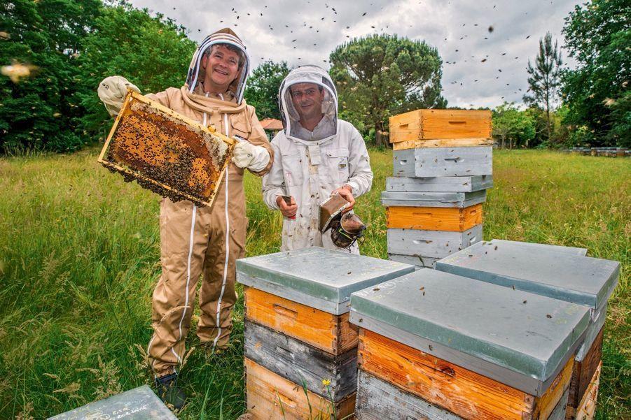 A Pontenx-les-Forges, avec l'apiculteur Thomas Mollet, partenaire de la Seraf, la Société d'élevage et de repeuplement des abeilles de France créée en janvier 2018 par Arnaud Montebourg.