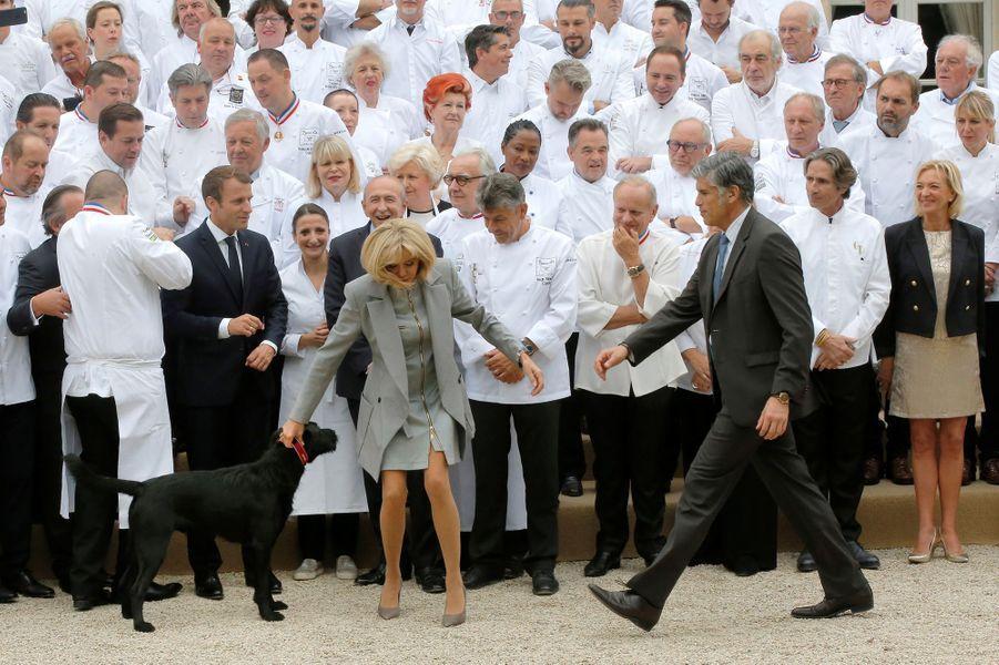 Emmanuel Macron et son épouse Brigitte ont reçu 180 chefs étoilés à l'Elysée. Leur chien Nemo a essayé de s'inviter sur la photo de famille.