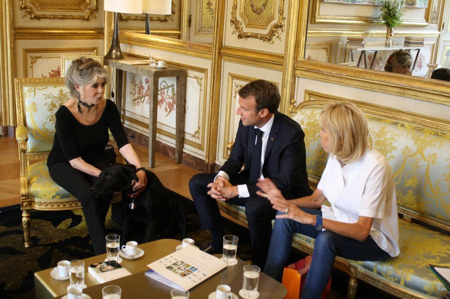Brigitte Bardot rencontre Emmanuel et Brigitte Macron à l'Elysée mardi.