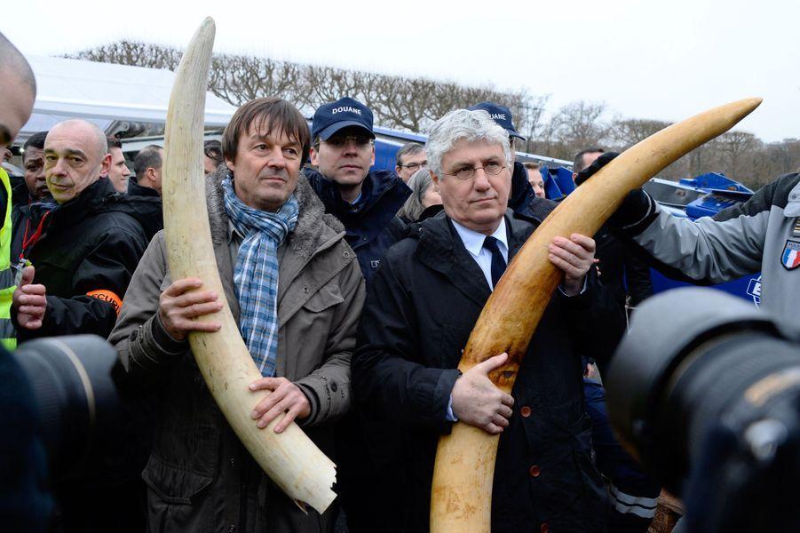 Philippe Martin, ministre de l'Ecologie de François Hollande, et Nicolas Hulot sensibilisent contrele braconnage des éléphants d'Afrique, au pied de la Tour Eiffel, en février 2014.