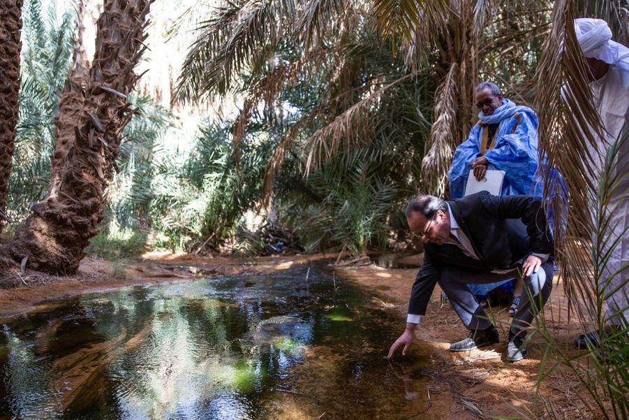 Dans l'oasis de Terjit, perdue au milieu de l'immensité désertique de l'Adrar, en Mauritanie, rien ne se perd.
