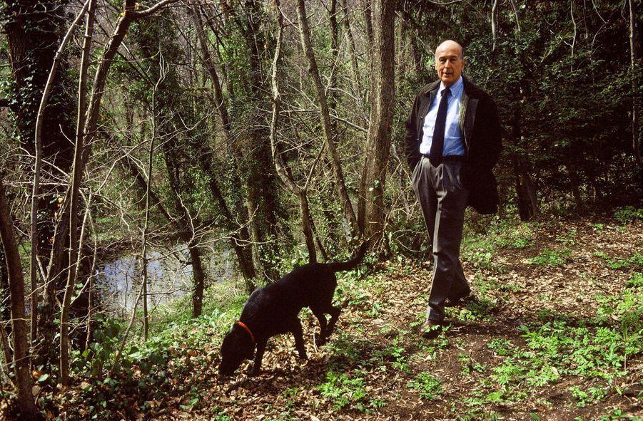 Valéry Giscard d'Estaing avec son chien, dans la forêt de son domaine de La Varvasse, à Chanonat, dans le Puy-de-Dôme, en avril 1986.