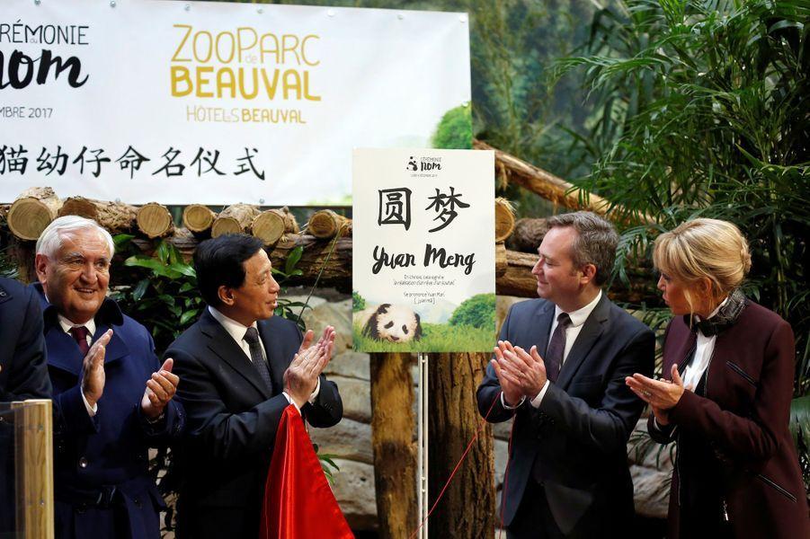 Le nom du bébé panda est dévoilé, il s'appelle désormais Yuan Meng.
