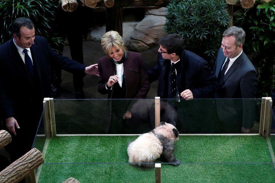 Brigitte Macron lundi au zoo de Beauval pour le baptême du bébé panda.