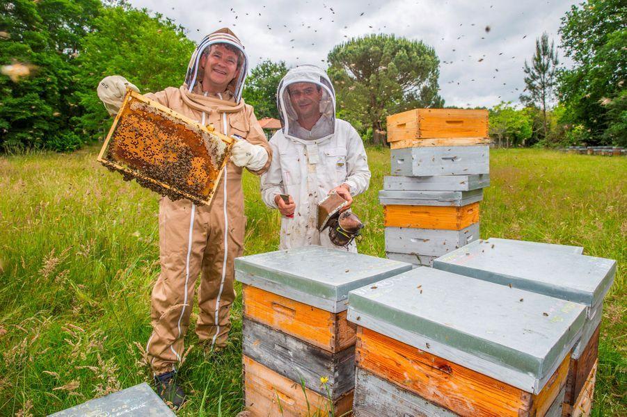 En juin dernier à Pontenx-les-Forges, avec l'apiculteur Thomas Mollet, partenaire de la Seraf, la Société d'élevage et de repeuplement des abeilles de France créée en janvier 2018 par Arnaud Montebourg.