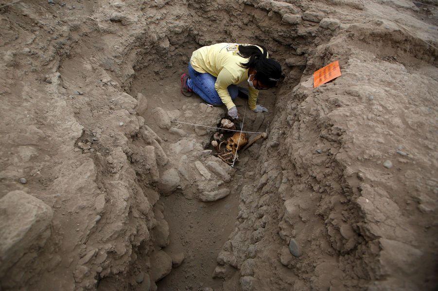 Les restes d'une femme et d'un homme trouvés en 2014