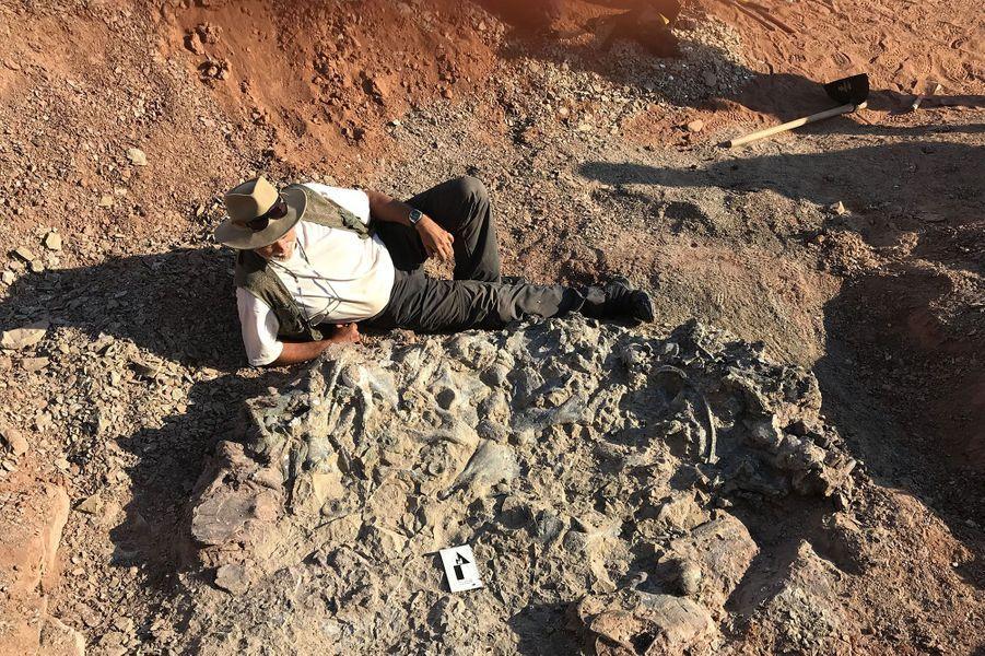 Un chercheur devant l'un des fossiles du cimetière