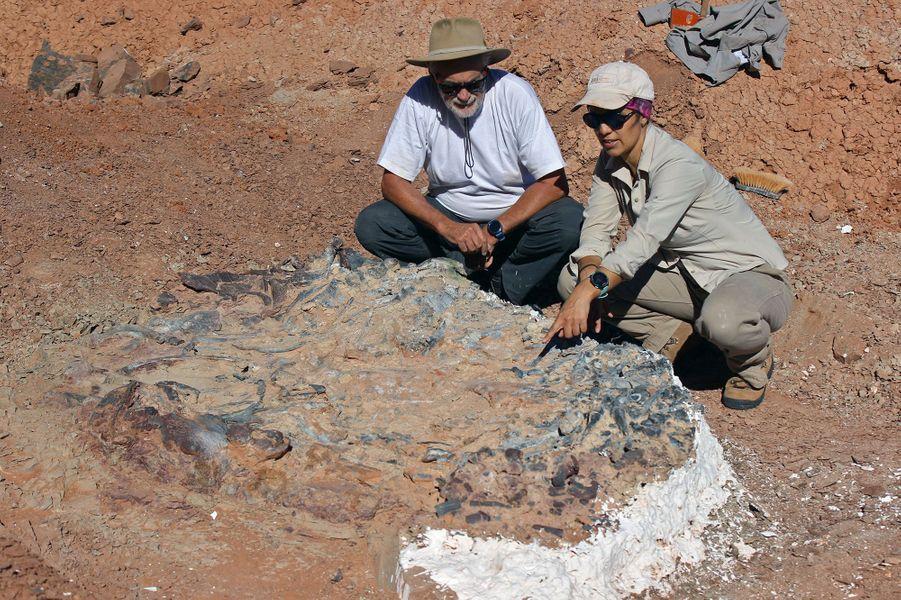 Deux chercheurs devant l'un des fossiles du cimetière