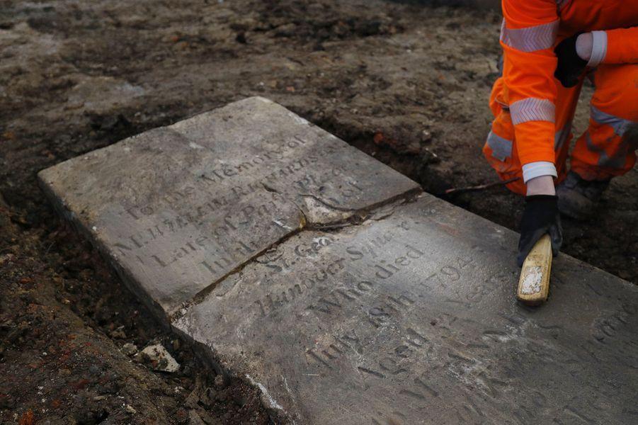 Dans le parc St James Gardens, à côté de la gare d'Euston (Londres), des archéologues travaillent d'arrache-pied pour exhumer les quelque 40 000 dépouilles enterrées.