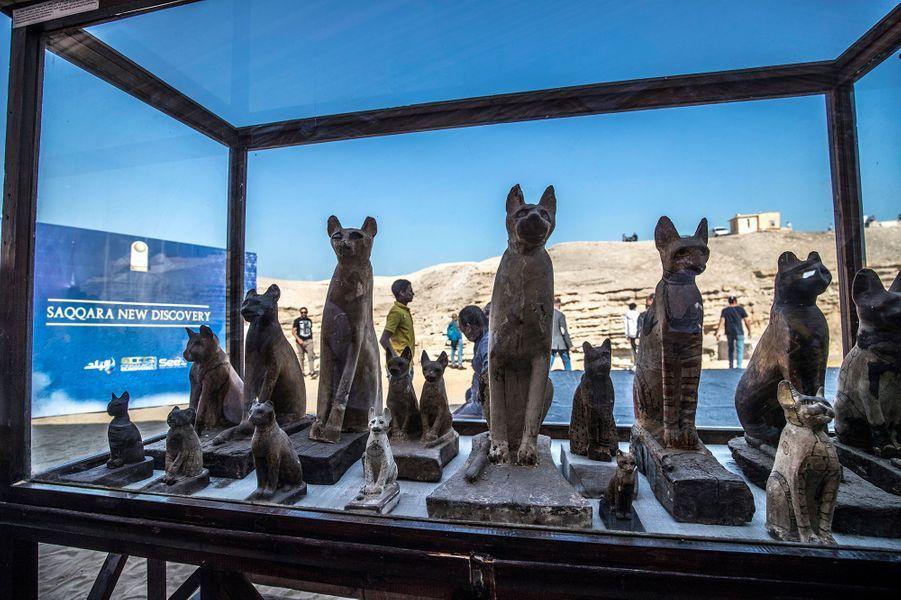 Les statuettes sont exposées au public près dela nécropole de Saqqarah, là où ont été trouvées.