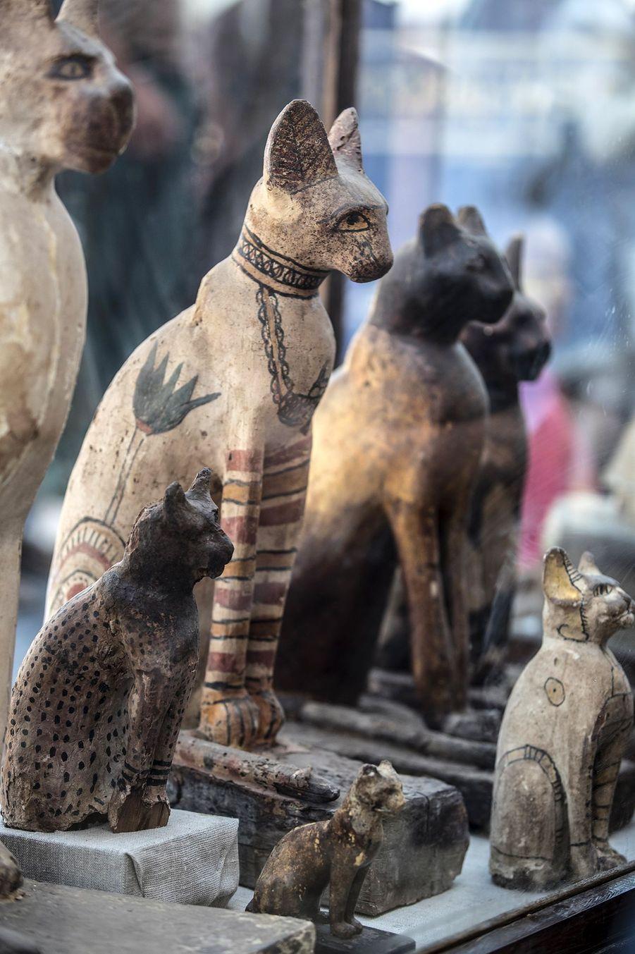 Les statuettes sont exposées au public près de la nécropole de Saqqarah, là où ont été trouvées.