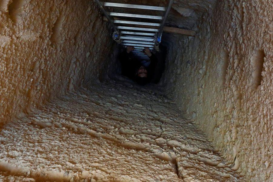 L'échelle menant au tombeau familial où ont été découvertes les momies