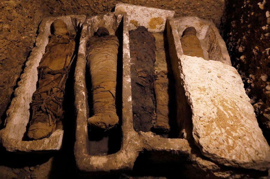 Les momies ont été découvertes sous le sol sableux du site archéologique de Touna el-Gebel
