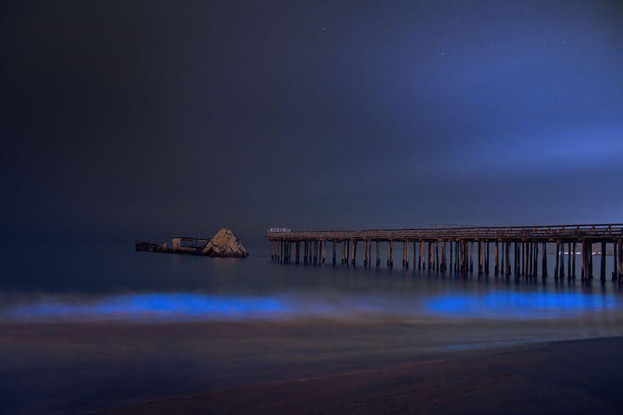 Le plancton éclaire les vagues de la plage de Santa Cruz en Californie.