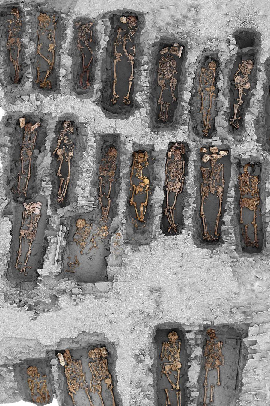Les tombes ouest-est sont disposées dans des rangées orientées nord-sud. Un espace de circulation interne au cimetière est perceptible dans la partie basse de la photo. Les recoupements entre fosses sont rares et ne portent jamais atteinte aux ossements. Cette organisation des tombes démontre la gestion rigoureuse et la rationalisation extrême de l'espace funéraire qui ne peut être obtenue que par une signalisation de surface pérenne.