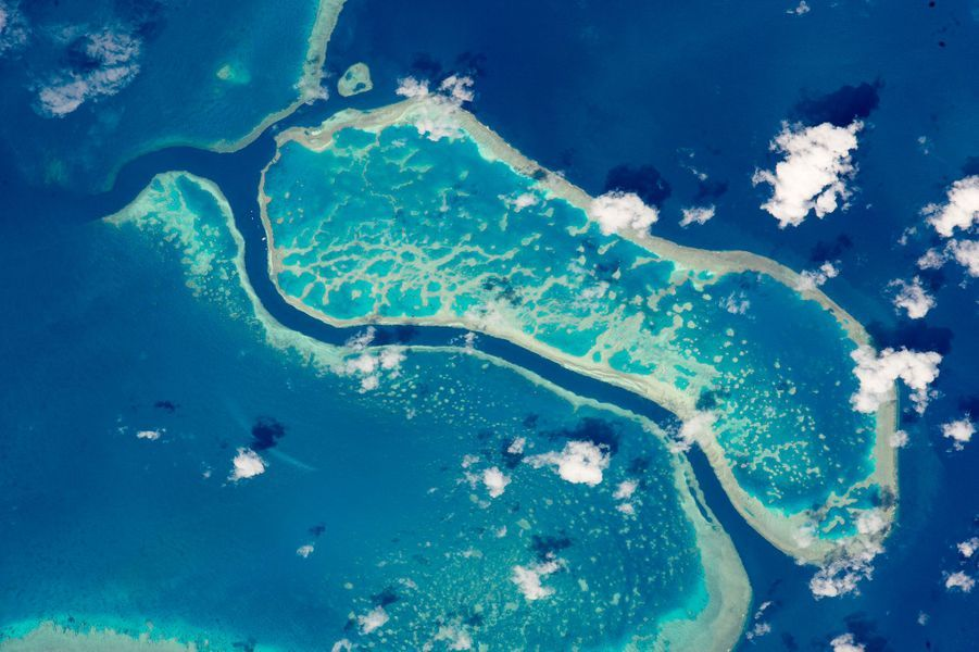 La Grande barrière de corail, depuis l'ISS