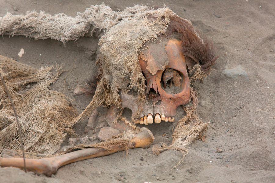 Lors des fouilles archéologiquesà Pampa La Cruz, près de la ville de Huanchaco, dans la région côtière de Trujillo, à 700 km au nord de Lima.