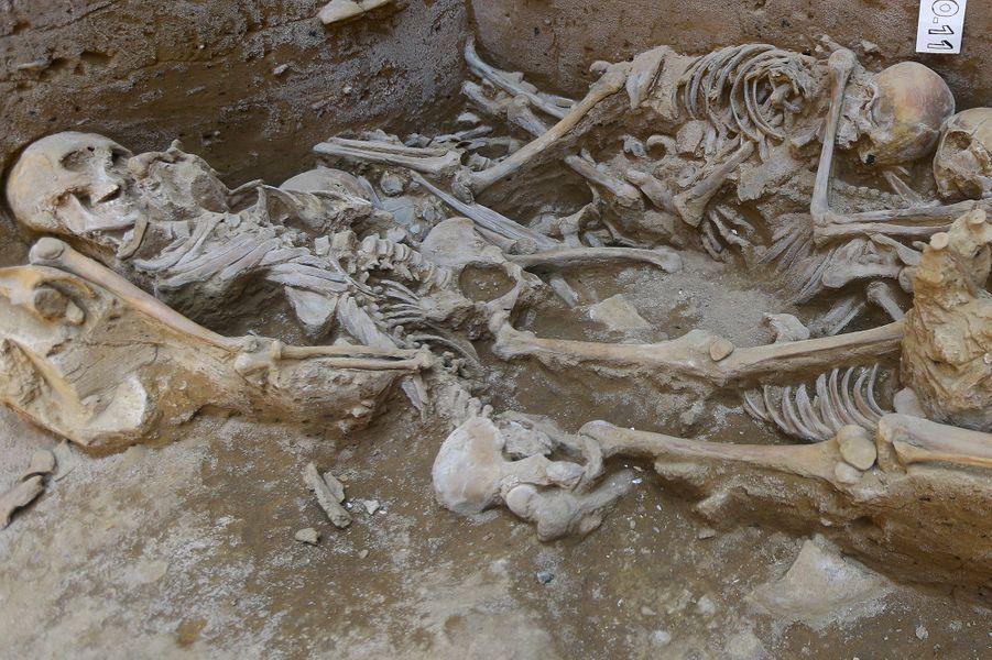 Une partie des neufs squelettes vieux d'environ 1000 ans.