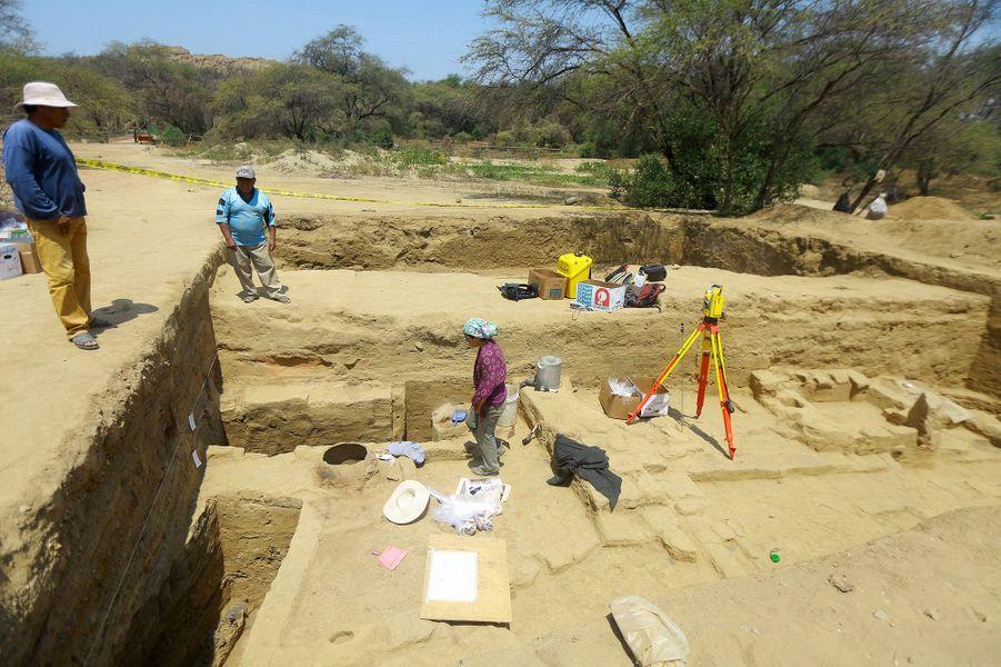 Bue du site archéologique péruvien.