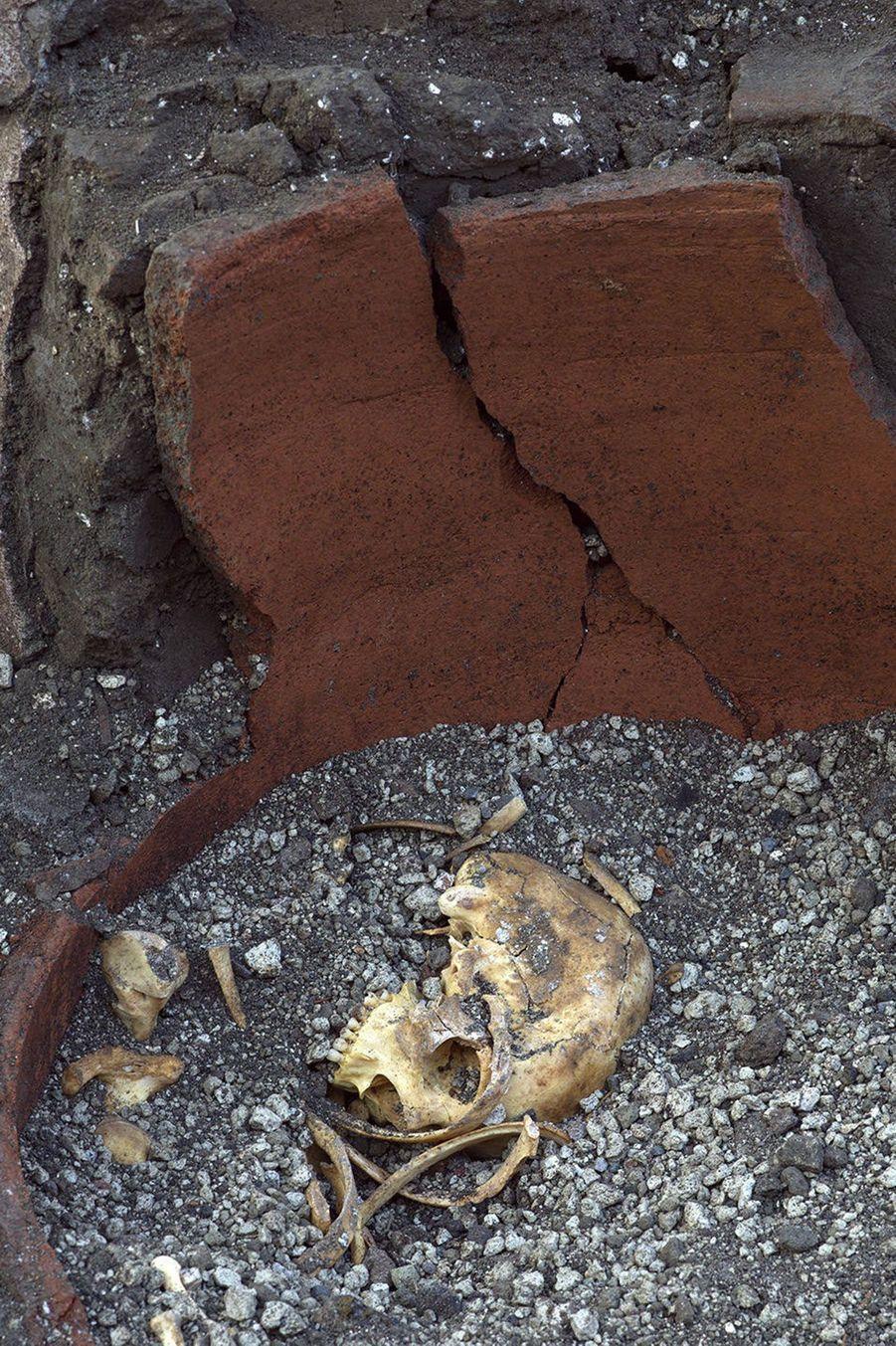 Un fragment d'os de canard, mais aussi des restes de porc, de chèvre, de poisson et d'escargots ont été récupérés dans les pots en terre cuite.